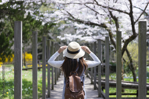 Wall mural Woman is enjoy sightseeing Cheery Blossom in the park in Japan.
