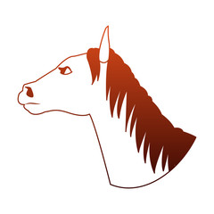 Horse head cartoon vector illustration graphic design