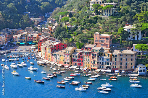 Plexiglas Liguria Liguria Portofino, view of harbor with moored boats and pastel colored houses lining the bay with trees on hills behind, Italy.