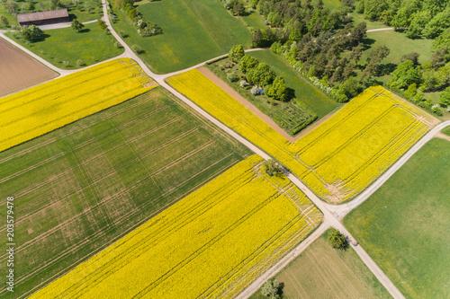 Fotobehang Oranje Luftbild blühende Rapsfelder im Frühling