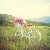 Retro white bicycle on grass in meadow in spring with basket full of pink peonies. Natural lighting, matte filter.