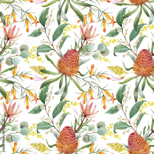 Watercolor australian banksia vector pattern - 203636292