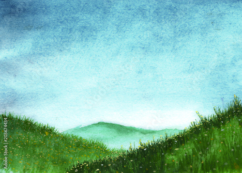 Green grass with flowers on meadows in watercolor