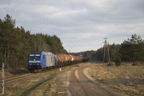 Pociąg towarowy jedzie przez las