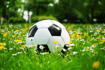 Fussball schwarz weiss liegt in der Wiese mit Blumen im Frühling
