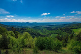 A nice view over black forest Germany in the summer with some clouds in the sky and green trees