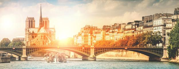 vista dalla Senna di Parigi e Notre Dame