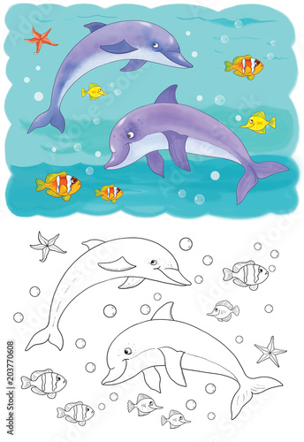 Fototapeta Sea animals. Ocean. Cute dolphins. Illustration for children. Coloring page. Cute and funny cartoon characters