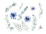Watercolor floral greenery set. Hand drawn isolated vector illustration. Botanical art background - 203786617
