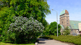 Szczecin. Springtime view of the church in the city center - 203801439