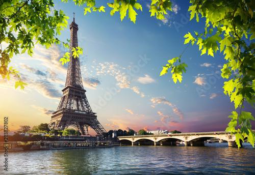 Foto Murales Eiffel Tower and bridge