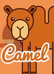 camel cartoon poster african animal vector illustration