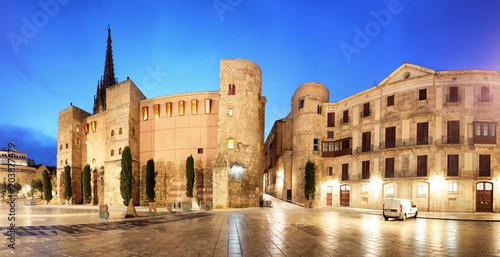 Fotobehang Barcelona Barcelona - Placa Nova, Panorama with cathedral, Spain