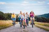Family riding their bicycles on afternoon in the summer countryside - 203886630