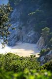 Typical Costa Brava landscape - 203896292