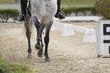 Patas de un caballo al trote en doma clasica - 203909018