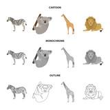 African zebra, animal koala, giraffe, wild predator, lion. Wild animals set collection icons in cartoon,outline,monochrome style vector symbol stock illustration web.