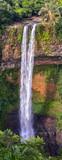 cascade de Chamarel, site emblématique de l'île Maurice - 204035496