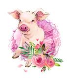 Cute pig watercolor illustration