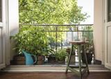 Urban Gardening - 204048221