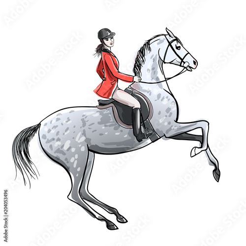 Beautiful rider and dapple grey horse on white. Horseman girl in red jacket on rearing up stallion. England equestrian sport style. Hand drawing vector cartoon illustration.