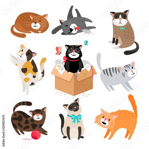 Cartoon cats isolated on white