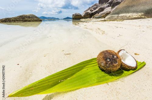 Aluminium Fyle Coconut in the Seychelles