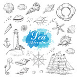 Isolated sea objects on a white background. Shells, starfish, anchor, lighthouse, fish, ship - 204082000