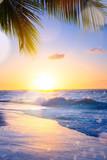 Art summer vacation drims; Beautiful sunset over the tropical beach - 204086488