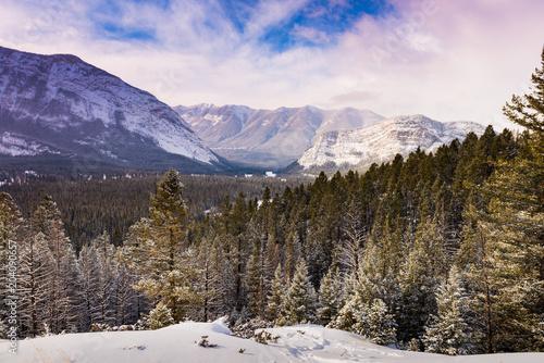Plexiglas Canada Snowy Scenery