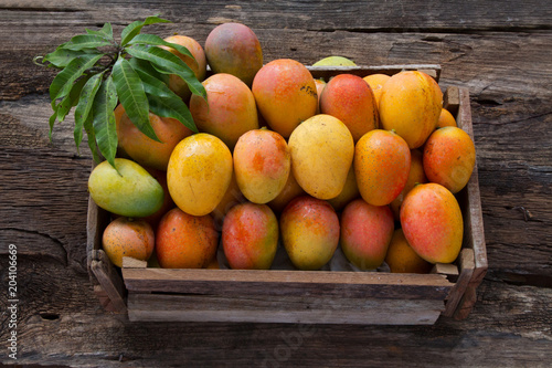 Mango fruits in wooden box with leaf after harvest from farm, Mango fruits with leaf on wood background - 204106669