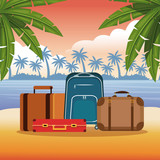 Beach and summer cartoon elements vector illustration graphic design - 204127249