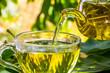 Leinwandbild Motiv Mountain tea beautifully composed in the nature