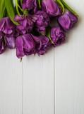 Spring tulip flowers - 204194469