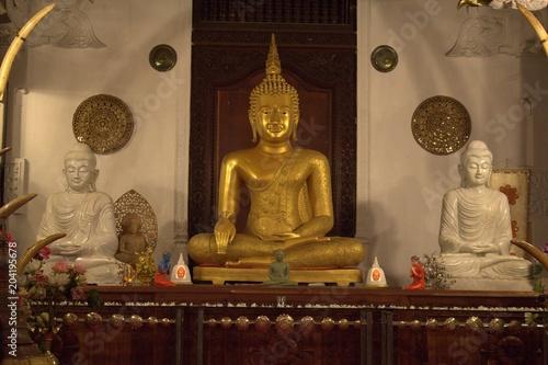 Plexiglas Boeddha Sri lanka
