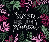Tropical leaves. Vector frame in scandinavian style. Hand drawn background. Poster in magenta and green colors with place for lettering - 'Bloom where you are planted'. - 204217080