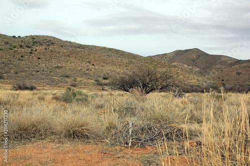 Canvas Arizona Paysage de l'Arizona, un jour de temps couvert. (USA)