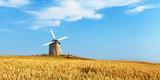 Moulin et champ de blé. © Prod. Numérik