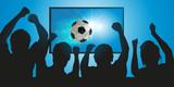 football - foot - footballeur - but - marquer - ballon - spectateur - TV - sport - match - sportif - télé - média - 204236620