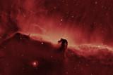 Horsehead nebula un orion