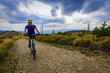 Quadro Cycling, mountain biking woman on cycle trail in autumn forest. Mountain biking in autumn landscape forest. Woman cycling MTB flow uphill trail.