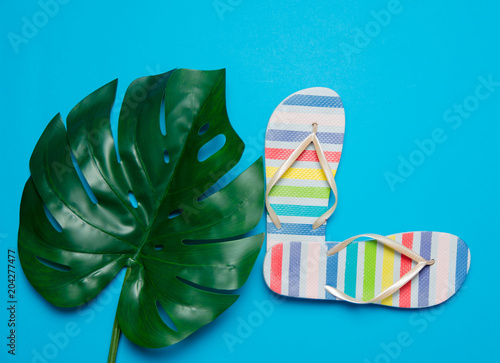 colored flop flops sandals and palm leaf. Objects isolated on blue background