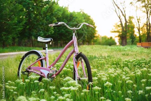 Bicykl na łące w parku
