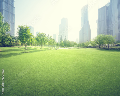 park in lujiazui financial center, Shanghai, China - 204288231