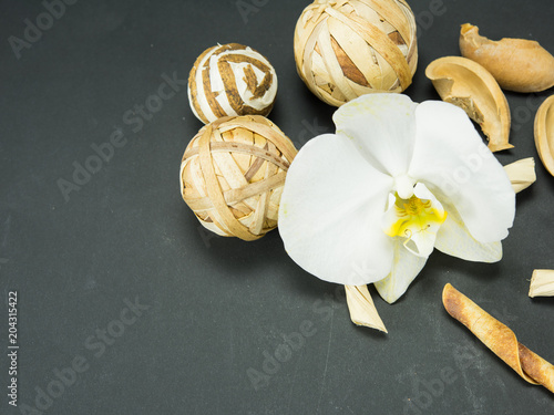 Fototapeta orchid, a white archide flower with a yellow center. black background, spa, one flower