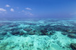 Indian ocean with coral reefs