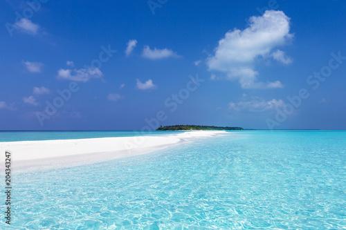 Fototapeta Maldivian sandbank in Indian ocean