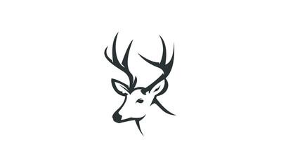 deer head ilustration