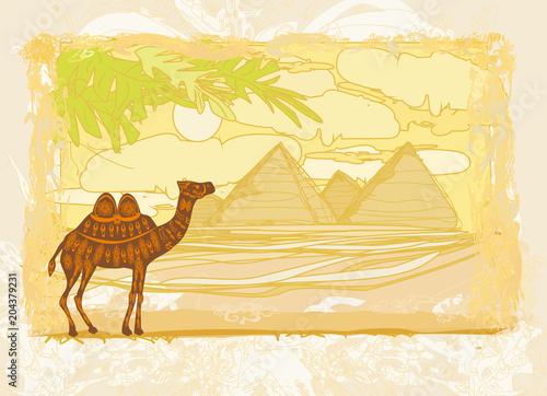 Plexiglas Zwavel geel Camel in egypt desert