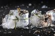Flores congeladas